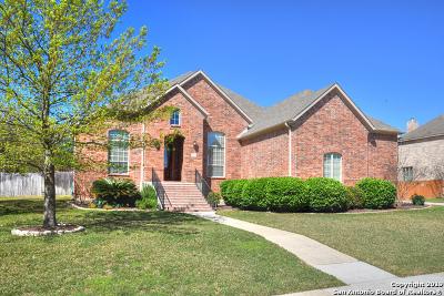 San Antonio Single Family Home New: 211 Bushbuck Path
