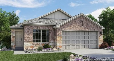 Converse Single Family Home New: 8411 Cassia Cove
