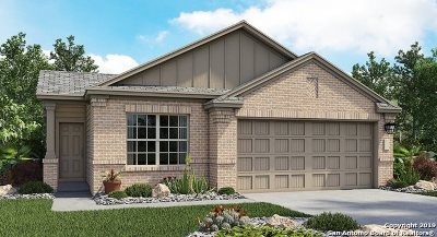 Converse Single Family Home New: 8435 Cassia Cove