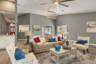 San Antonio TX Single Family Home New: $349,900