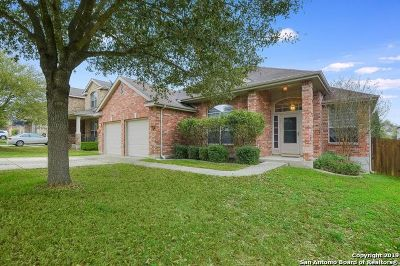 Cibolo Single Family Home Active Option: 137 Falcon Crossing