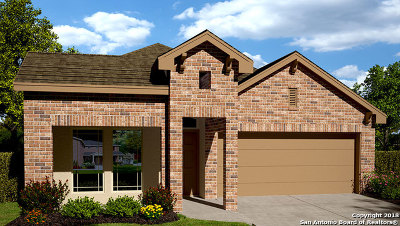 New Braunfels Single Family Home New: 330 Orion