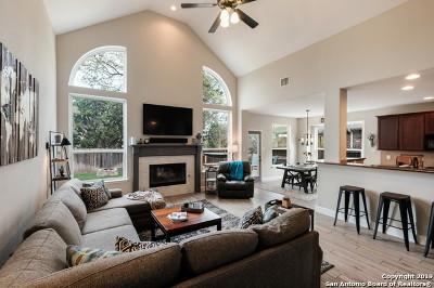 San Antonio Single Family Home New: 23614 Misty Peak