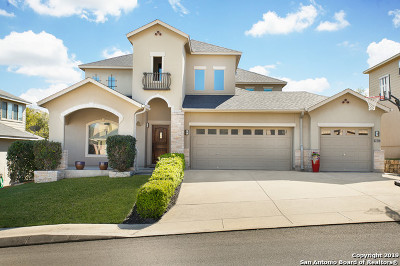 San Antonio Single Family Home New: 2910 Elm Tree Park