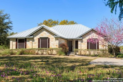 Atascosa County Single Family Home New: 1270 Meadows Rd