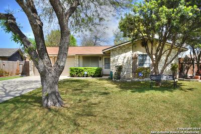 San Antonio Single Family Home New: 6607 Spring Brook St