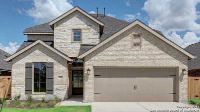 San Marcos Single Family Home New: 317 Lacey Oak Loop