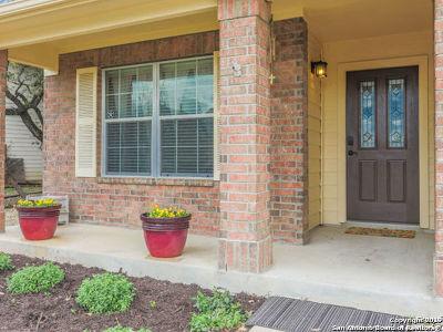 San Antonio Single Family Home New: 8414 Braun Path