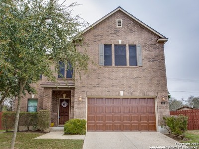Stone Oak Single Family Home New: 11906 Tokyo