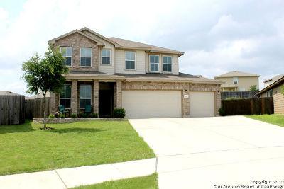 San Antonio Single Family Home New: 8003 Solar Mist
