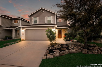 San Antonio Single Family Home New: 11839 Silver Coins
