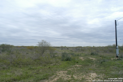 Atascosa County Residential Lots & Land For Sale: 5899 County Road 426