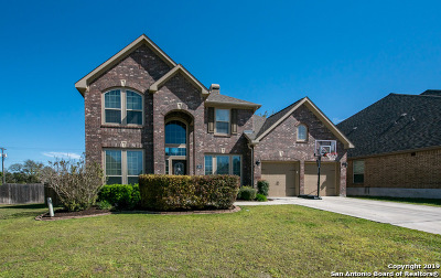 New Braunfels Single Family Home New: 463 Wilderness Way
