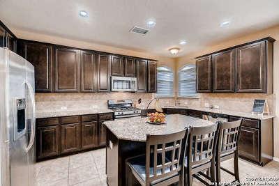San Antonio Single Family Home New: 6414 Palmetto Way