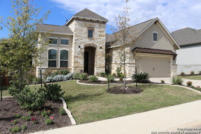 San Antonio Single Family Home New: 4010 Monteverde Way