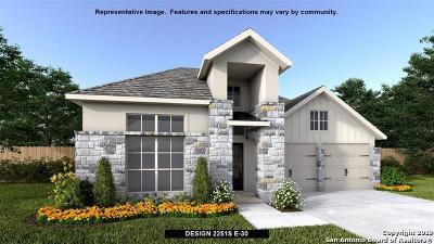 New Braunfels Single Family Home New: 1169 Hammock Glen