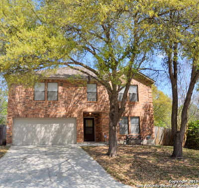 San Antonio Single Family Home New: 7703 Autumn Park