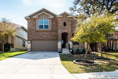 San Antonio Single Family Home New: 173 Summer Tanager