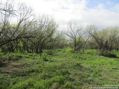 Atascosa County Residential Lots & Land For Sale: 1142 Heickman Rd