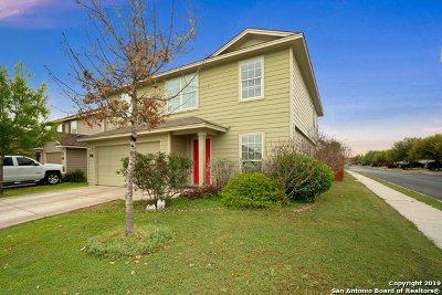 San Antonio Single Family Home New: 738 Cormorant
