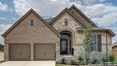 San Antonio Single Family Home New: 28453 Shailene Drive