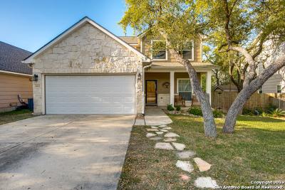 San Antonio Single Family Home New: 10810 Sierra Ridge Dr