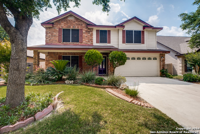 Helotes Single Family Home New: 11214 Ocate