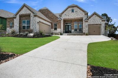 Cibolo Canyons Single Family Home For Sale: 4119 Little Gem