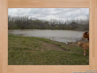 Atascosa County Farm & Ranch New: 117880 Ih-37