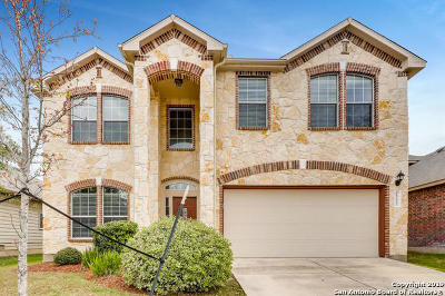 San Antonio Single Family Home New: 25222 Hideout Fls