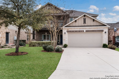 Boerne Single Family Home New: 125 Krieg Dr