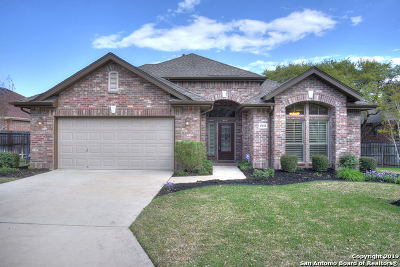 Helotes Single Family Home New: 13818 French Oaks