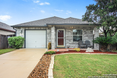 San Antonio Single Family Home New: 10623 Shaenmeadow
