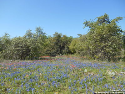 Atascosa County Residential Lots & Land For Sale: Blue Lily Dr