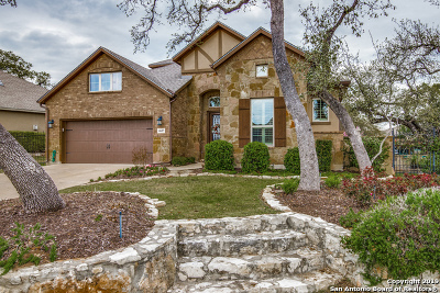 San Antonio Single Family Home New: 4607 Amorosa Way