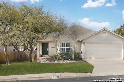 San Antonio Single Family Home New: 3923 Knollcross