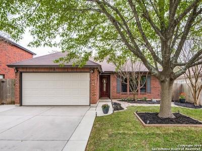 San Antonio Single Family Home New: 5206 Sagerock Pass