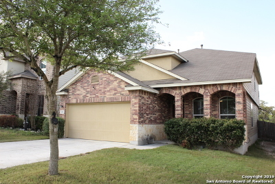 San Antonio Single Family Home New: 251 Reeves Garden