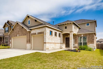 New Braunfels Single Family Home New: 341 Green Heron
