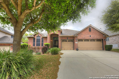 Cibolo Single Family Home New: 165 Brush Trail Ln