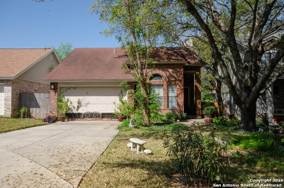San Antonio Single Family Home New: 13015 Cavern Park Dr