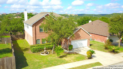 Helotes Single Family Home New: 15515 Portales Pass