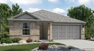 New Braunfels Single Family Home New: 1866 Abigail Ln