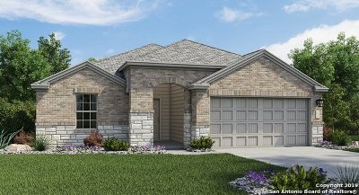New Braunfels Single Family Home New: 447 Mallow Drive