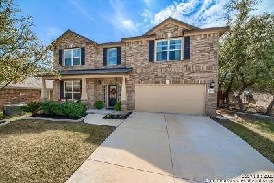 San Antonio Single Family Home New: 1014 Iron Mesa