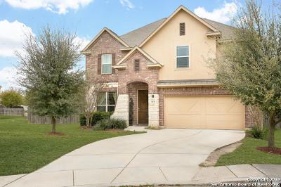 San Antonio Single Family Home New: 11839 Perla Joy