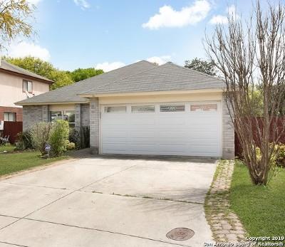 San Antonio Single Family Home New: 2410 Canyon Trce