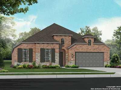 San Antonio Single Family Home New: 10306 Cactus Hills