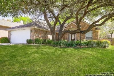 San Antonio Single Family Home New: 6522 Amber Oak