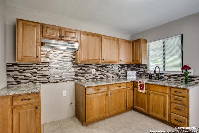 San Antonio Single Family Home New: 234 Pletz Dr
